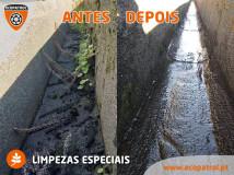 2021-03-16-limpezaalgerozes-00